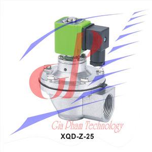 Pulse valve XQD-Z-25 (Screw Type)